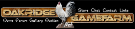 Gamefowl Auction- Oakridge Gamefarm
